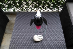 Cendrier chien - Art by Ze Studio Annecy